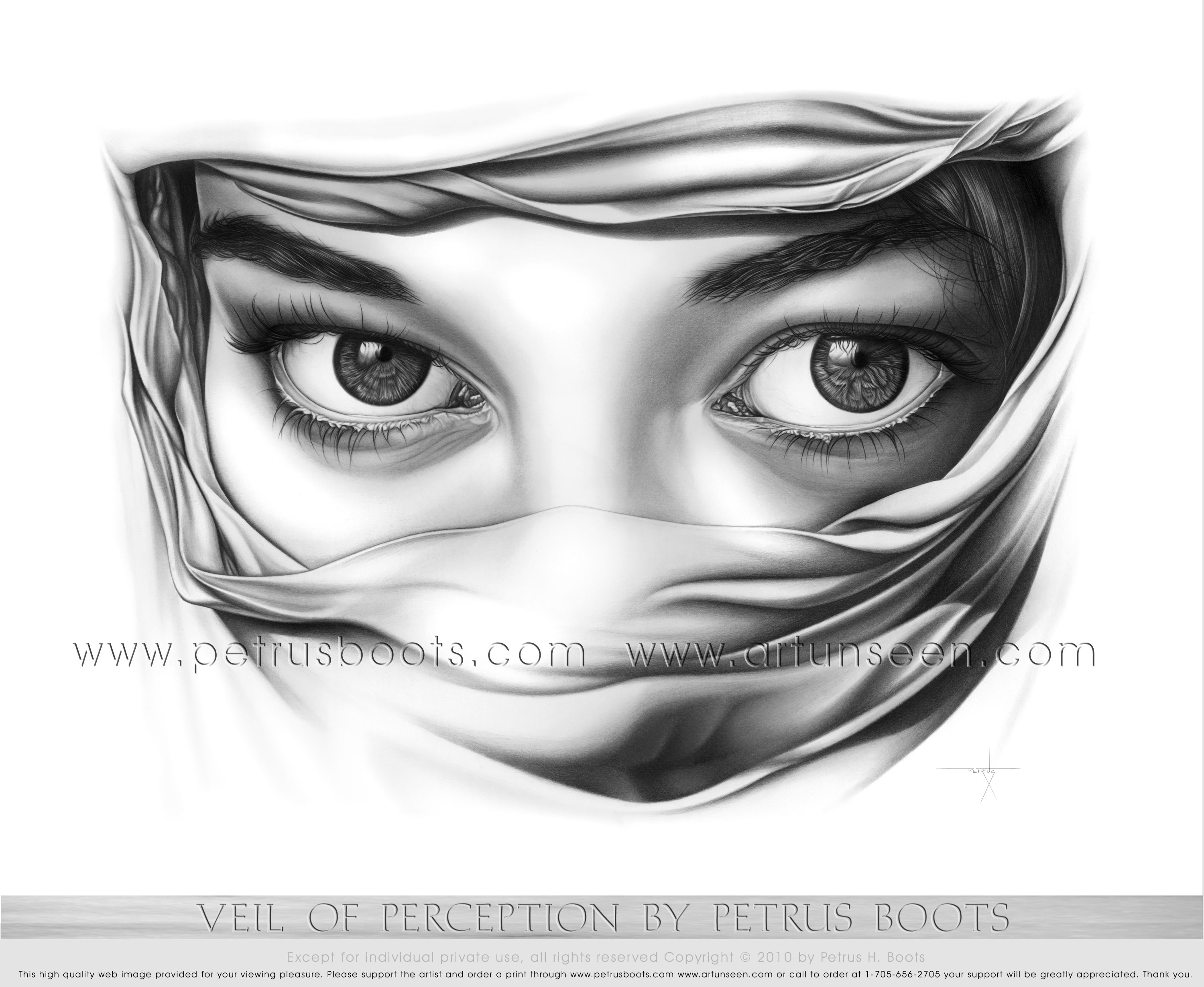 The Art of Petrus Boots ~ Veil of Perception ~ Graphite Pencil ...